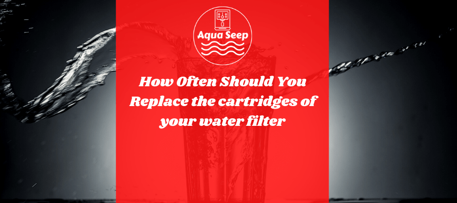 How often should you replace the cartridges of your water filter